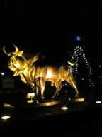 Avesta Christmas