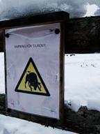Warning Bull