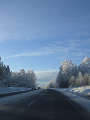 frost (1 av 1)